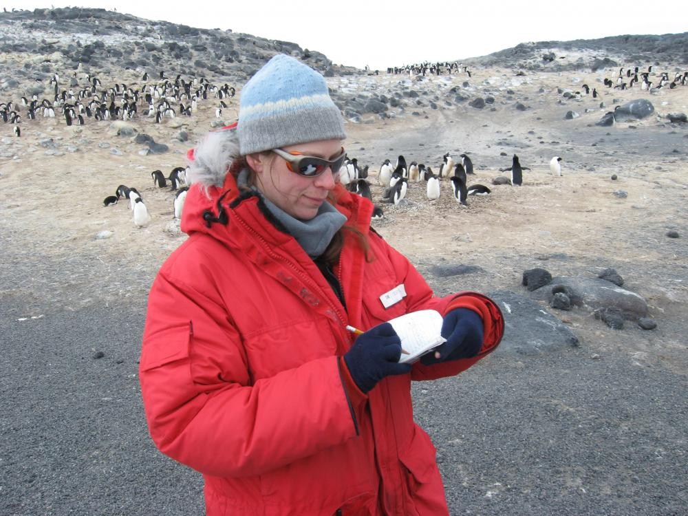 A woman in a red, puffy jacket writes observations down as penguins play in the background