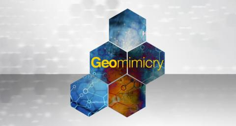 hexagons with the word geomimicry