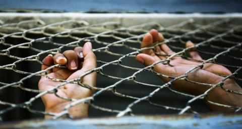hands grip a chain fence