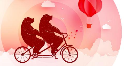 Two bears riding a tandem bike